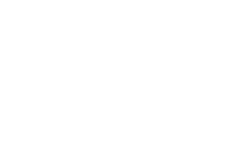 Four Seasons Preferred Partner